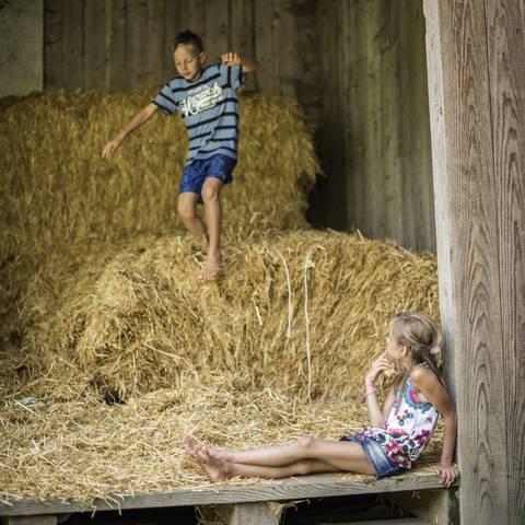 Geschmack der Kindheit - Spass im Heu Naturgut Lassen