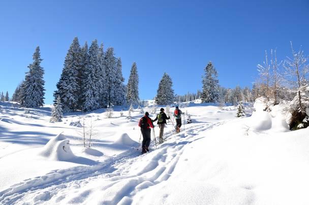 Skitour in der Region Villach