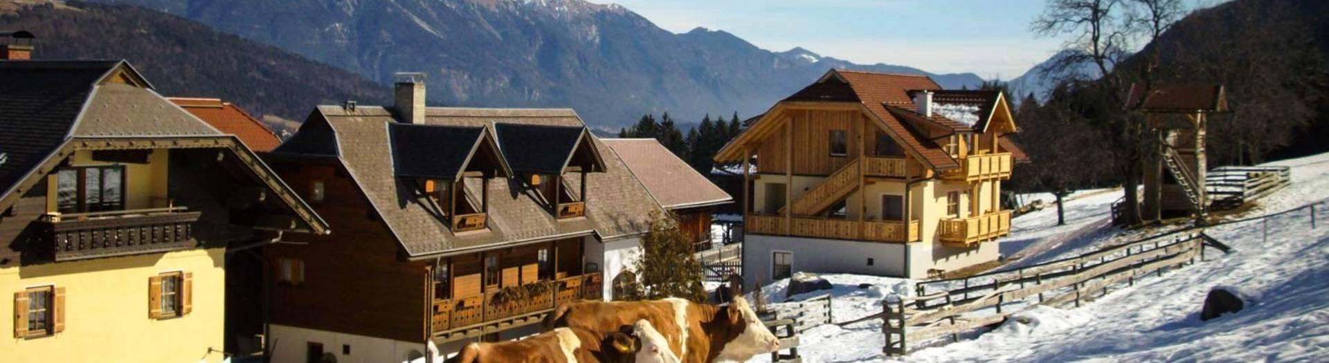 Urlaub am Bauernhof im Winter am Schönauerhof am Nassfeld in Kärnten