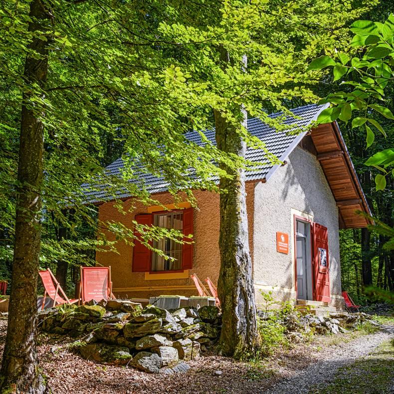 Gustav Mahler Komponierhaeuschen im Wald c Mirco Taliercio