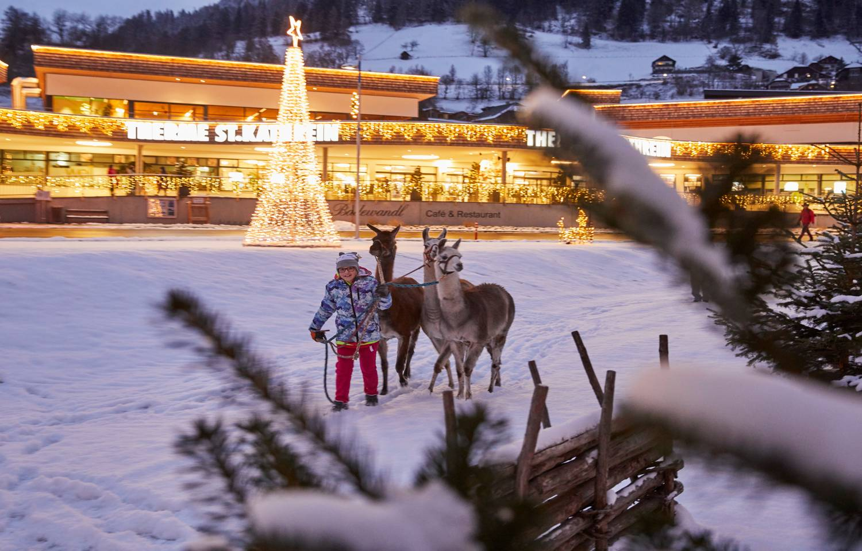 Advent_BKK_Alpiner Thermen Advent Lamas