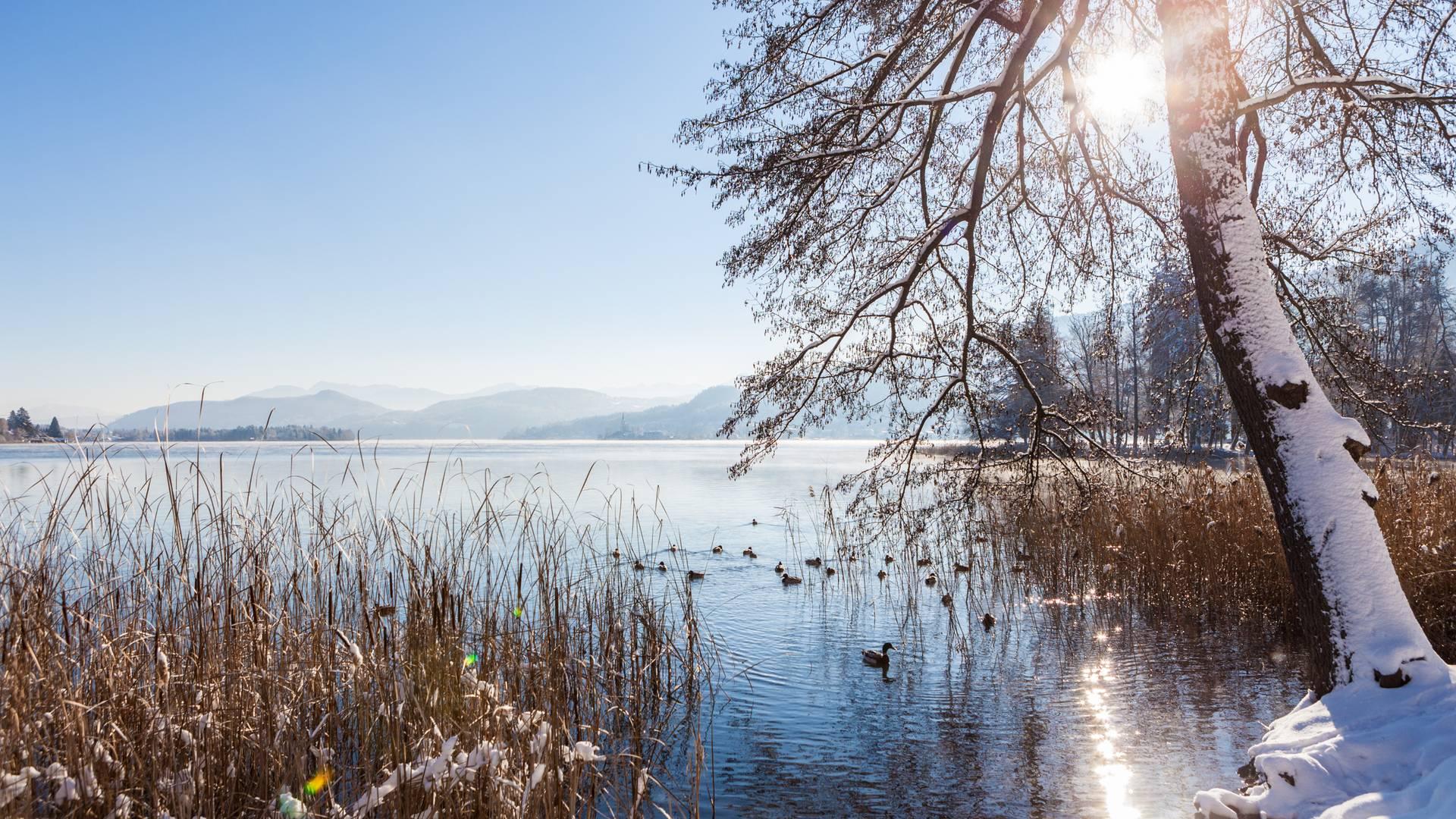 Winterlandschaft Wörthersee